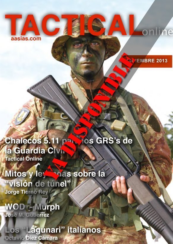Tactical Online Diciembre 2013