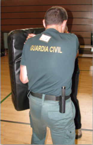 Guardia Civil extensible ASP